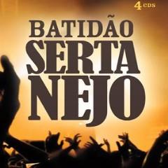 cd coletanea batidao sertanejo 2009